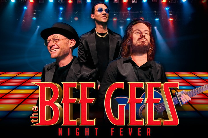 The Bee Gees Night Fever